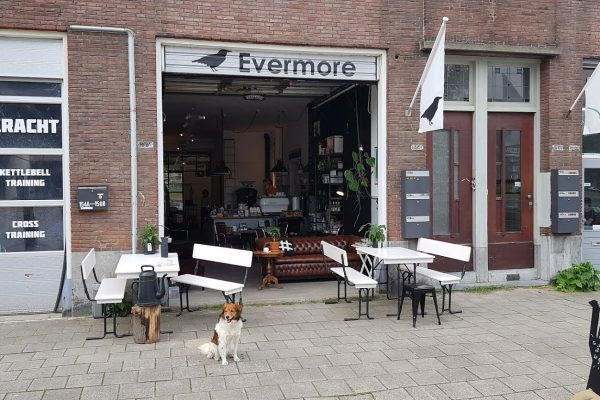 Evermore Rotterdam